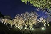 陽明山國家公園:_DSC6091.jpg