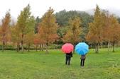 武陵農場:DSC_4986.jpg