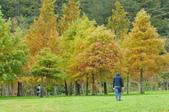 武陵農場:DSC_5045.jpg