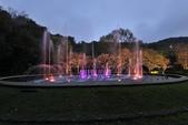 陽明山國家公園:_DSC5829.jpg