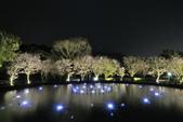 陽明山國家公園:_DSC5883.jpg