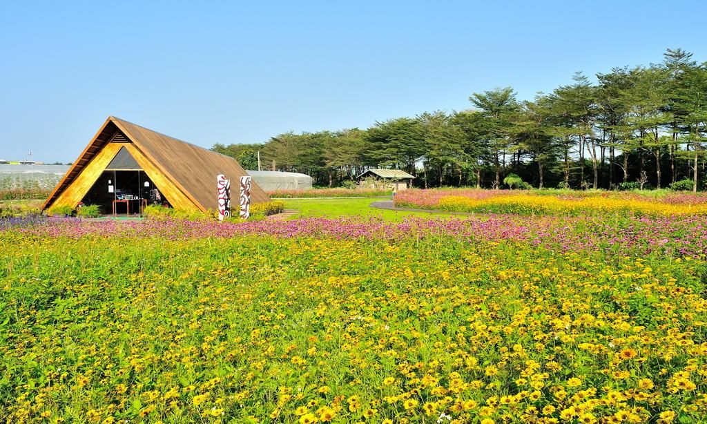 2020屏東熱帶農業博覽會:DSC_8229.jpg