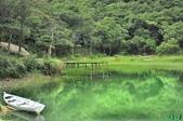 新山夢湖:_DSC3901.jpg