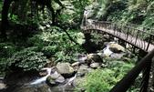 新寮瀑布.:DSC_7863.jpg