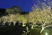 陽明山國家公園:_DSC6086.jpg