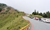 合歡山北峰步道:DSC_2286.jpg