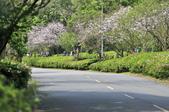 陽明山國家公園:_DSC1112.jpg