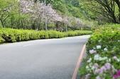 陽明山國家公園:_DSC1133.jpg