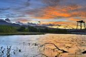 社子島濕地~:_DSC7085.jpg