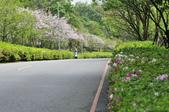 陽明山國家公園:_DSC1166.jpg