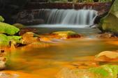 天母磺溪~:_DSC6769.jpg