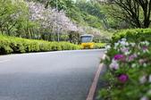 陽明山國家公園:_DSC1120.jpg