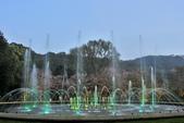 陽明山國家公園:_DSC5991.jpg