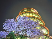 三芝 天元宮:_DSC6298.jpg