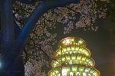 三芝 天元宮:_DSC6318.jpg
