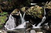 新寮瀑布.:DSC_7946.jpg