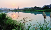 雙溪河畔~:DSC_9674.jpg