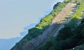 石門水庫梅園:DSC_8361.jpg