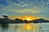 社子島濕地~:_DSC1245.jpg