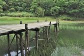 新山夢湖:_DSC3870.jpg