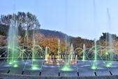 陽明山國家公園:_DSC6032.jpg