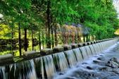 雲山   水人造生態濕地:DSC_3692.jpg