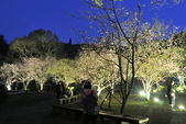 陽明山國家公園:_DSC6078.jpg