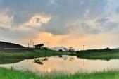 社子島濕地~:DSC_4750.jpg