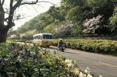 陽明山國家公園:_DSC1666.jpg