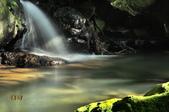 大屯溪瀑布:_DSC0120.jpg