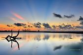 八里觀海長堤:DSC_7256.jpg