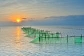 東石漁人碼頭~:DSC_6502.jpg