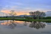 社子島濕地~:_DSC5769.jpg