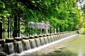 雲山   水人造生態濕地:DSC_1639.jpg