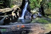 大屯溪瀑布:_DSC0184.jpg