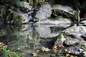 大屯溪瀑布:_DSC0215.jpg