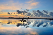 八里觀海長堤:DSC_7233.jpg