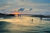 許厝港國家級濕地~:DSC_5590.jpg