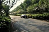 陽明山國家公園:_DSC1676.jpg