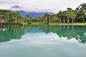 雲山   水人造生態濕地:_DSC0461.jpg