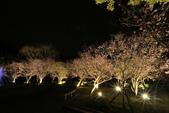 陽明山國家公園:_DSC5877.jpg