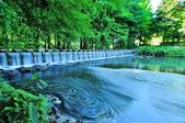 雲山   水人造生態濕地:DSC_3662.jpg
