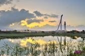 社子島濕地~:_DSC0900.jpg