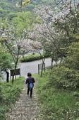 陽明山國家公園:_DSC1992.jpg