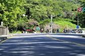 陽明山國家公園:_DSC9219.jpg