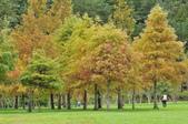 武陵農場:DSC_5042.jpg