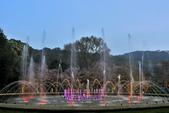 陽明山國家公園:_DSC5994.jpg