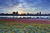 迪化跨堤觀景區鐵馬道~:_DSC8372.jpg