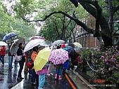 顏貝忠攝影記錄-2009.3.7台大步道(假日生態導覽):DSC00066.JPG