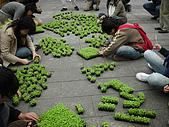 2008.12.6抗暖化:菜苗環保素食愛大地
